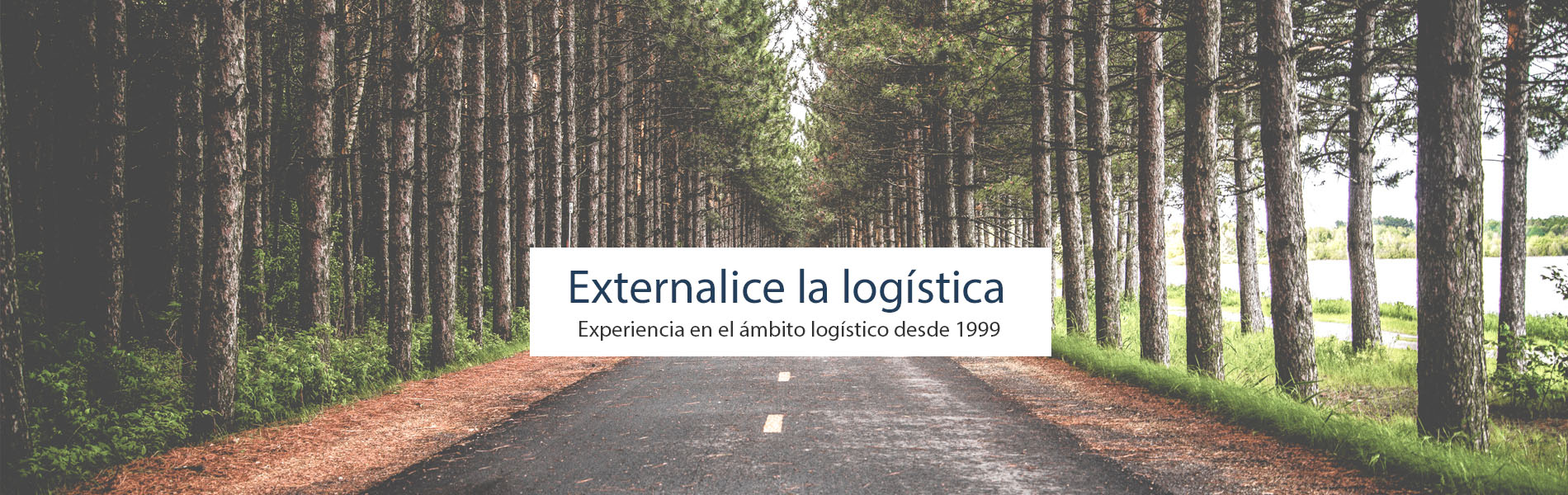 Logival externalice